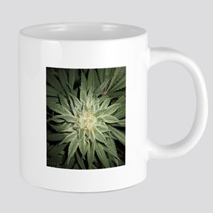 Cannabis Plant Mugs