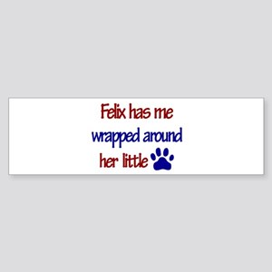 Felix - Wrapped Around Her Li Bumper Sticker