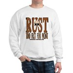 TOO FAST FOR PAINT Sweatshirt