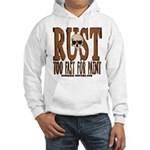 TOO FAST FOR PAINT Hooded Sweatshirt