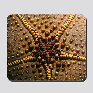 Chocolate Chip Starfish Mousepad