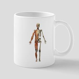 Anatomy Mugs