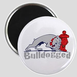 Bulldogged Magnet