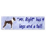 Mr Right Bumper Sticker
