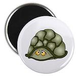 Cute Turtle Magnet