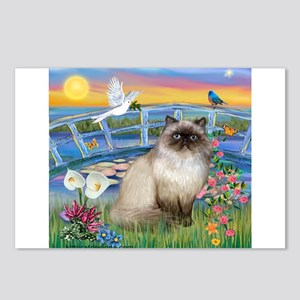 Lilies / Himalayan Cat Postcards (Package of 8)