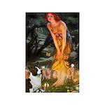 Fairies / Welsh Corgi Rectangle Magnet (10 pack)