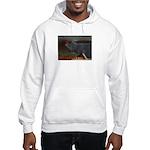 Tell a joke to a cat Hooded Sweatshirt