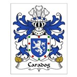 Caradog Family Crest Small Poster