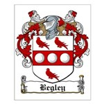 Begley Family Crest Small Poster