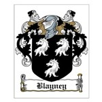Blayney Family Crest Small Poster