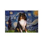 Starry Night / Sheltie (t) Rectangle Magnet (10 pa