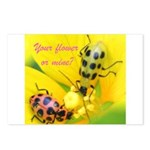 Your flower or mine? Postcards (Package of 8)