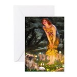 Fairies / Tibetan Spaniel Greeting Cards (Pk of 20