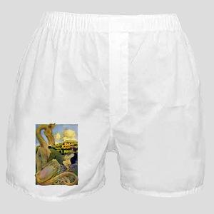 LAST DRAGON Boxer Shorts