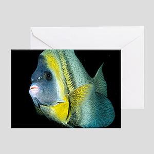 Cortez Angel Fish Greeting Card