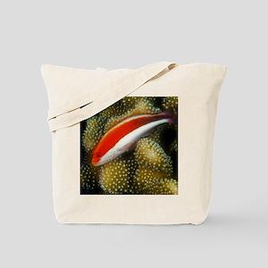 Freckled Hawk Fish Tote Bag