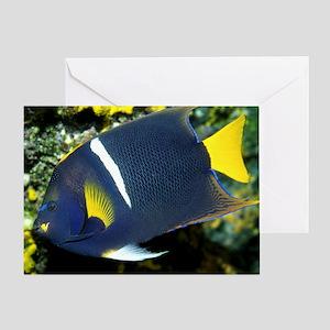 King Angel Fish Greeting Card