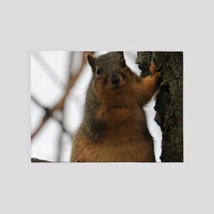 squirrel 5'x7'Area Rug