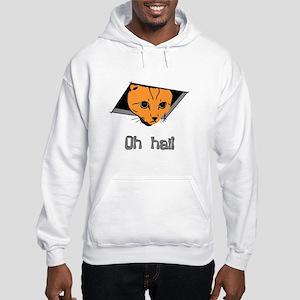 Ceiling Cat Hooded Sweatshirt