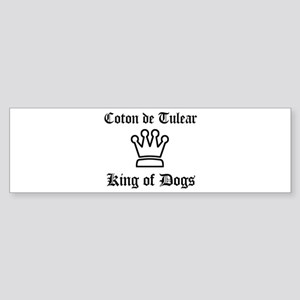 Coton de Tulear - King of Dog Bumper Sticker