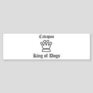 Cavapoo - King of Dogs Bumper Sticker