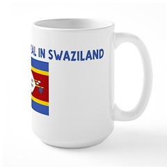 IM KIND OF A BIG DEAL IN SWAZ Large Mug