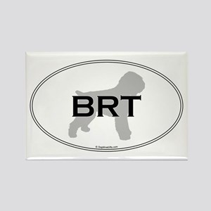 BRT Oval Rectangle Magnet