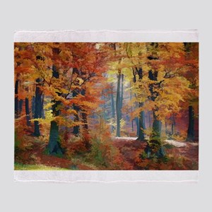 A Crisp Colorful Autumn Stroll Through the Woods T