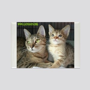 Cats Haven Rescue 1072 Rectangle Magnet