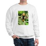 Mating Moths Sweatshirt