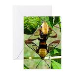 Mating Moths Greeting Card