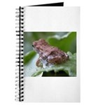 Frog on Leaf with Water Drop Journal