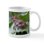 Frog On Leaf and Water Drop Mug