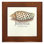 Junonia -  Framed Tile