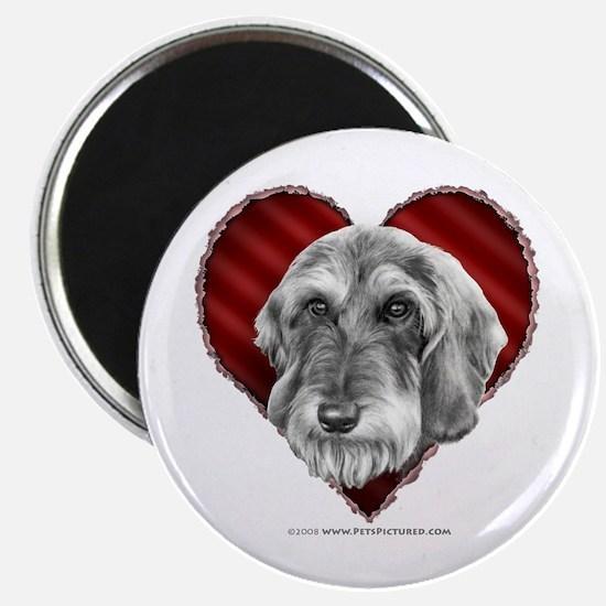 Wire-Haired Dachshund Valentine Magnet