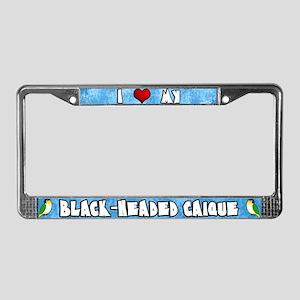 Crtn Love Black-Headed Caique License Plate Frame