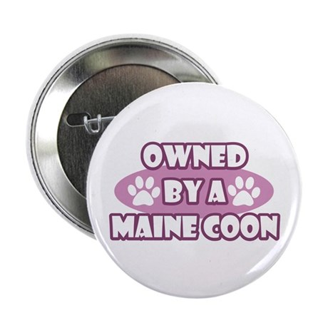 "Owned By A Maine Coon 2.25"" Button"