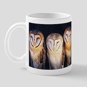 Owls153 Mugs