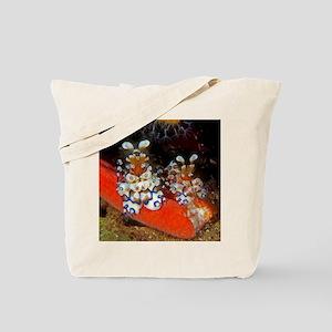 Harlequin Shrimp Tote Bag