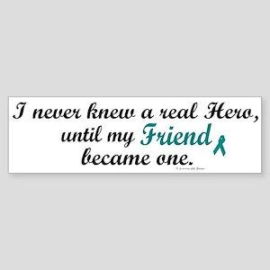 Never Knew A Hero OC (Friend) Bumper Sticker