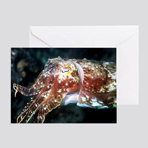 Cuttlefish Greeting Card