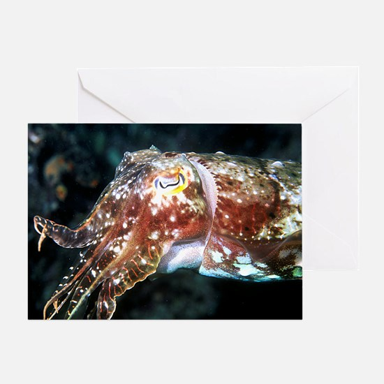Cuttlefish Greeting Card