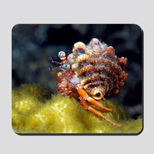 Funny Hermit Crab Mousepad