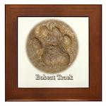 Real Bobcat Pawprint Framed Tile