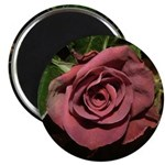 Castera Dusty Rose Photo on Round Magnet