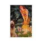 Fairies / Briard Rectangle Magnet