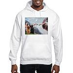 Creation / Briard Hooded Sweatshirt