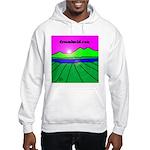 dreamlucid.com Hooded Sweatshirt