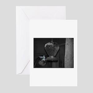 Humming Bird Greeting Cards (Pk of 10)